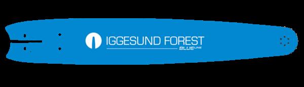 IGGESUND BlueLine WM 4L 2,0/10 mm Schlitz